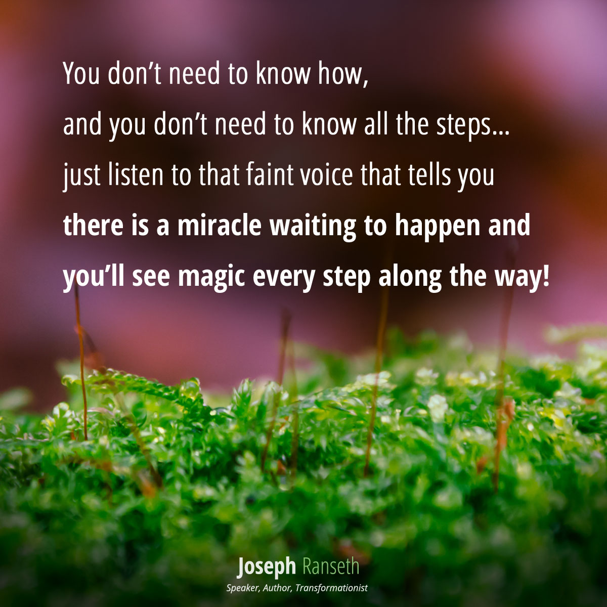 You don't need to know how, and you don't need to know all the steps… just listen to that faint voice that tells you there is a miracle waiting to happen and you'll see magic every step along the way!