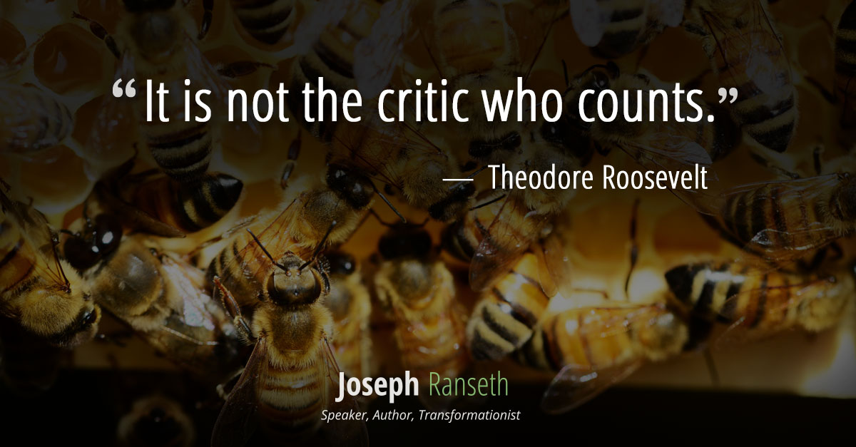 It is not the critic who counts... ~ Theodore Roosevelt