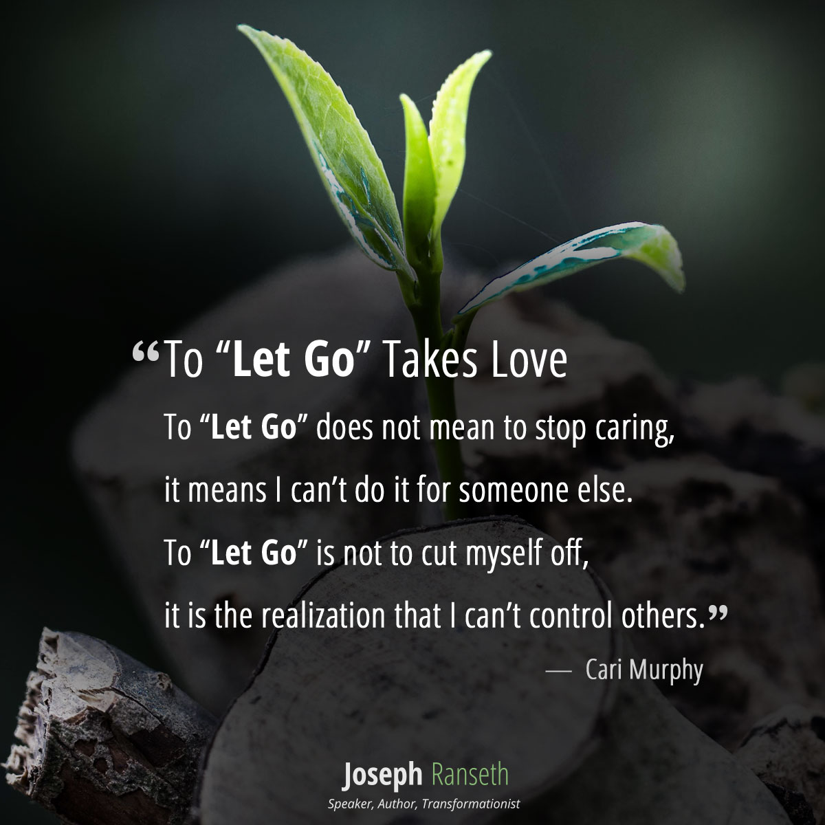 "To ""Let Go"" Takes Love To ""Let Go"" does not mean to stop caring,  it means I can't do it for someone else. To ""Let Go"" is not to cut myself off,  it is the realization that I can't control others."