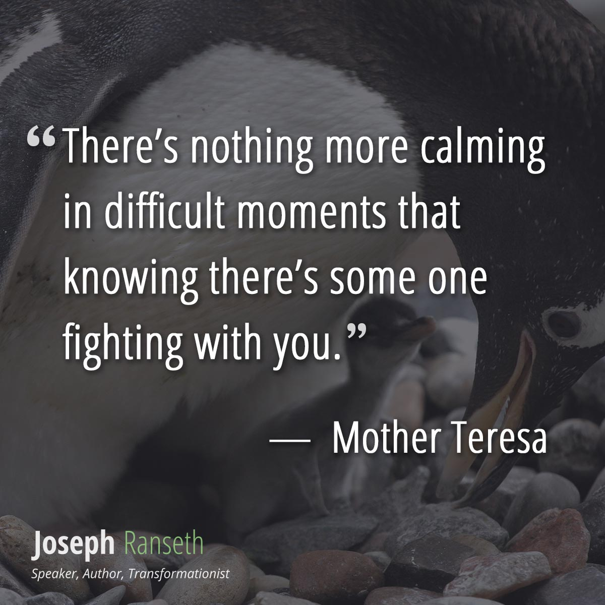There's nothing more calming in difficult moments that knowing there's some one fighting with you.